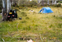 Campsite at Steppes